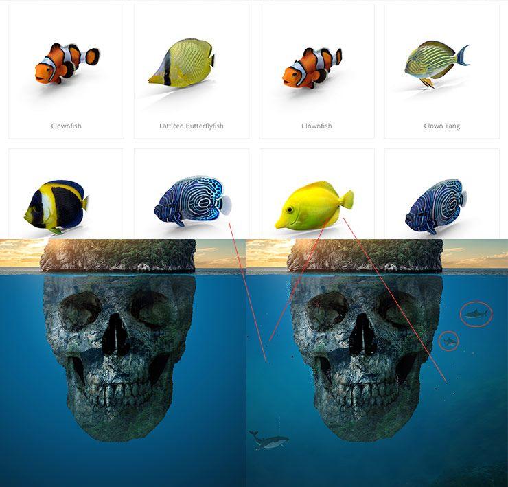 5-island-fish