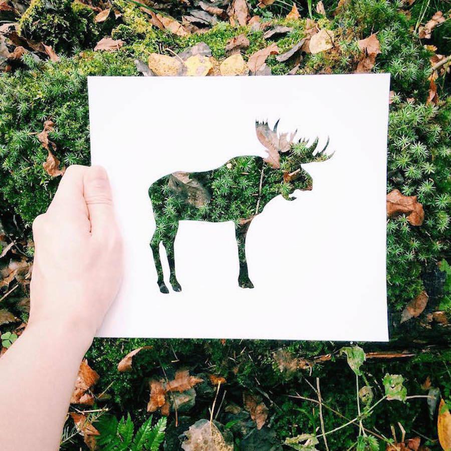 剪纸上的摄影艺术与自然融合