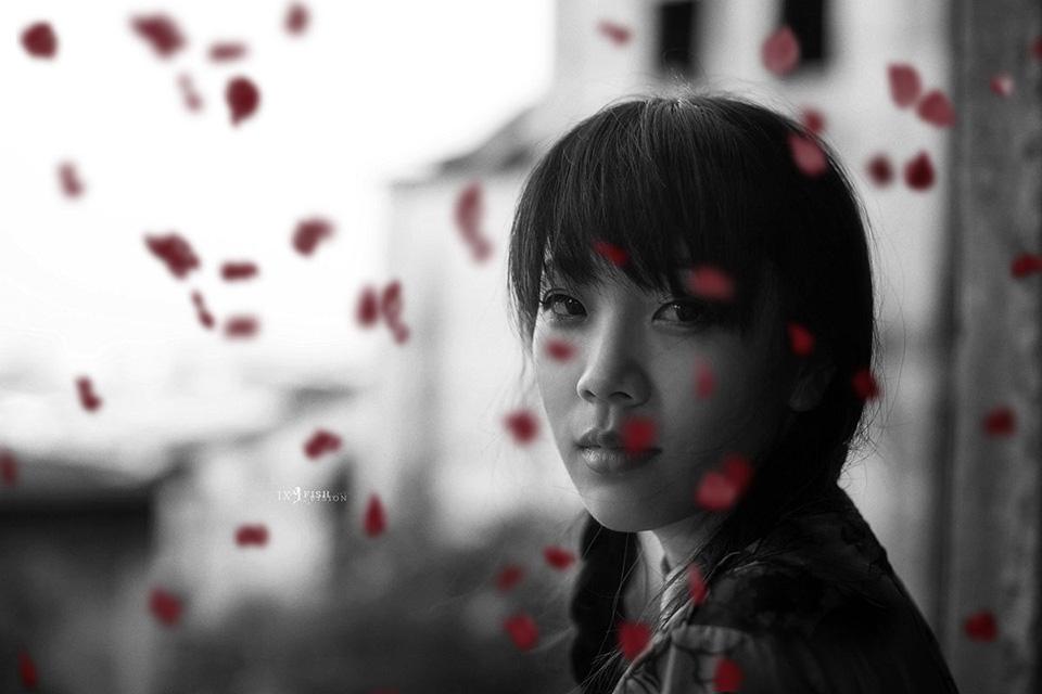 哭泣的玫瑰