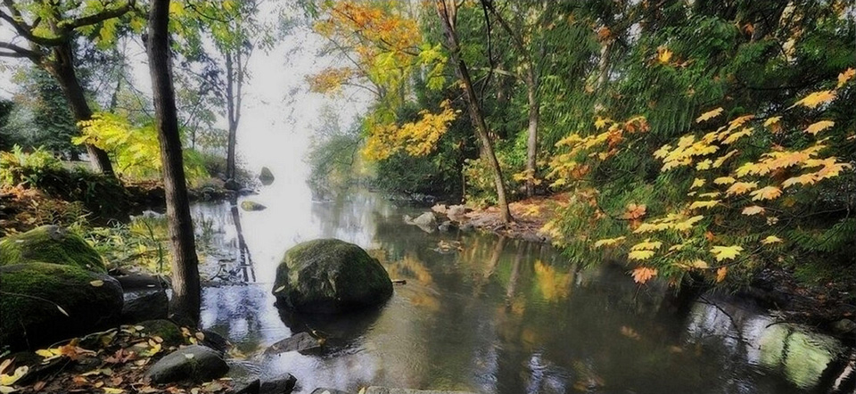 温哥华鹿湖景色犹如童话般世界
