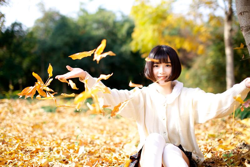 阳光洒在落叶上