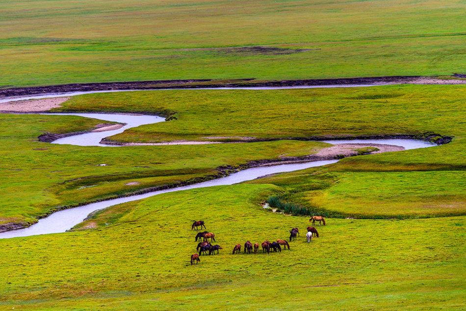 内蒙古夏牧场乃林河自然风光摄影图片