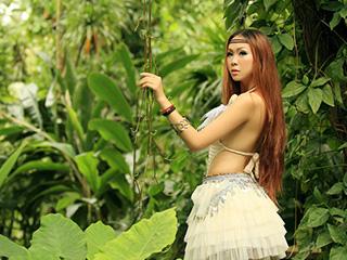 雨林部落传说