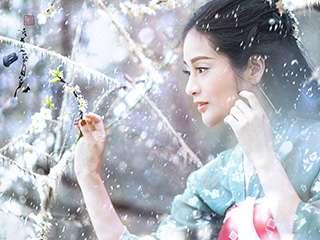 《清极不知寒为有暗香来》寿阳公主