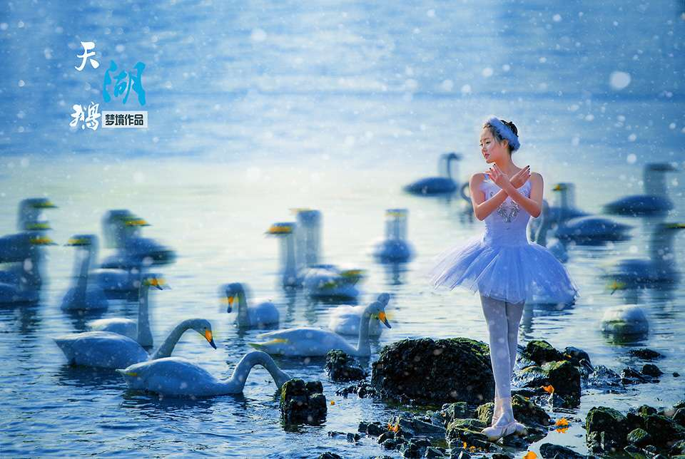 芭蕾舞天鹅湖