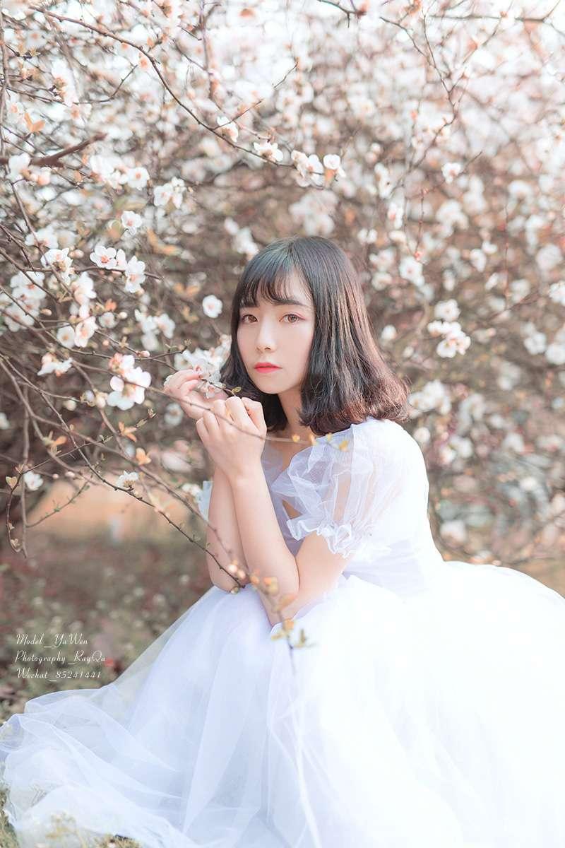一朵花开的声音是宁静
