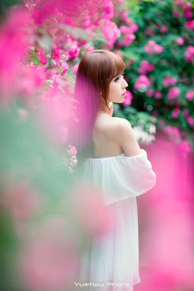 绚烂蔷薇花开美女写真图片