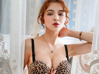 性感美女外籍模特豹纹内衣人像摄影图片