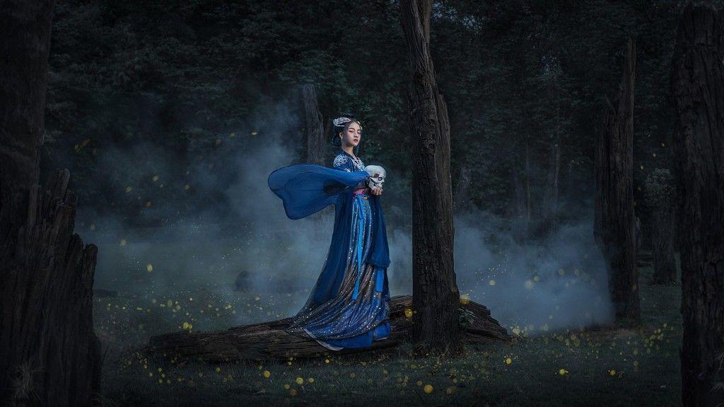 幽冥森林暗黑风格摄影作品