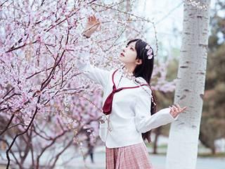 Shika小鹿鹿樱花唯美写真图片[13P]