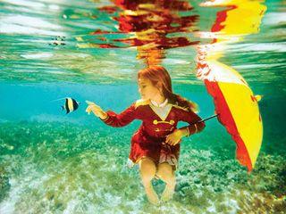 水下摄影如何让照片流光溢彩