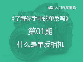 第01期什么是单反相机《了解你手中的单反吗》