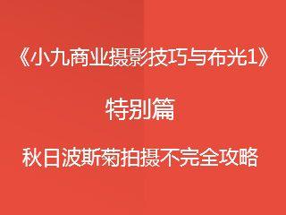 特别篇:秋日波斯菊拍摄不完全攻略《小九商业摄影技巧与布光